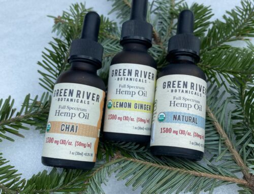 5 Ways CBD Can Help You Level-Up Your Wellness Regimen in the New Year